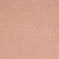 B8244 Nude Fabric