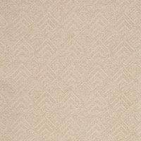 B8415 Champagne Fabric