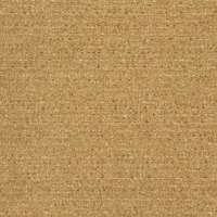 B8573 Golden Fabric