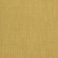 B8577 Forsythia Fabric