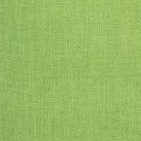B8644 Greenery Fabric