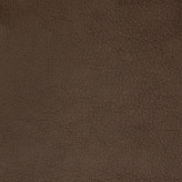 B8696 Earth Fabric