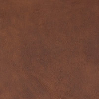 B8699 Nutmeg Fabric
