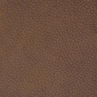 B8707 Charlotte Fabric