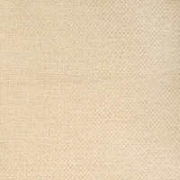 B8839 Sand Fabric