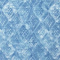 B8919 Rapids Fabric