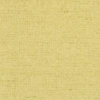 B9337 Chartreuse Fabric