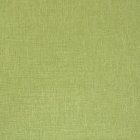 B9693 Apple Green Fabric