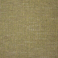 B9870 Sprout Fabric