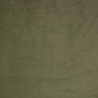 B9887 Light Green Fabric