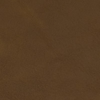 F2051 Caramel Fabric