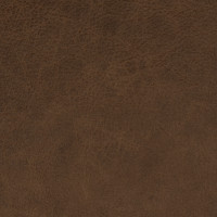 F2053 Pecan Fabric
