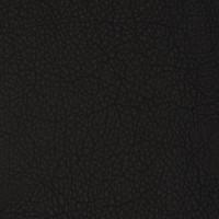 F2076 Black Fabric