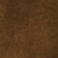 F2078 Rust Fabric