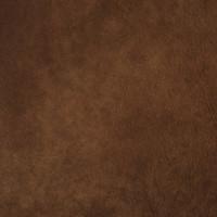 F2082 Cider Fabric