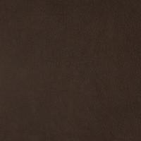 F2089 Tawny Fabric