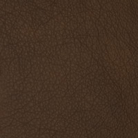 F2090 Syrup Fabric