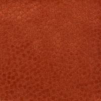 F2345 Apricot Fabric