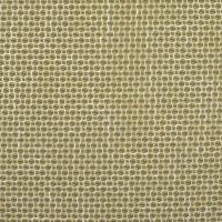 F2353 Cactus Fabric