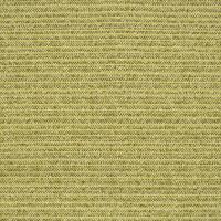 F2396 Kiwi Fabric