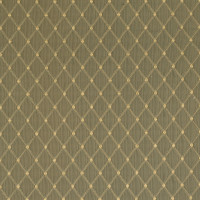 F2495 Feather Fabric