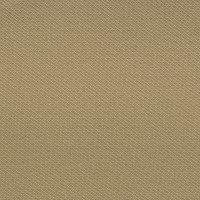 F2588 Canvas Fabric