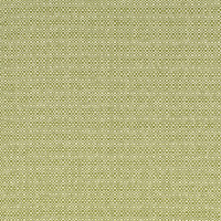 F2641 Sprout Fabric