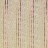 F2642 Carousel Fabric