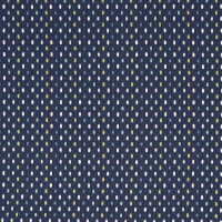 F2674 Navy Fabric