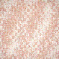 S1380 Coral Fabric