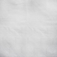 S1877 Pearl Fabric