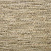 S2038 Pecan Fabric