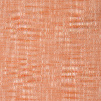 S2229 Citrus Fabric