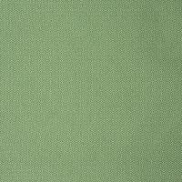 S2251 Green Fabric