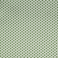 S2252 Green Apple Fabric