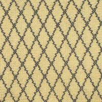 S2447 Coast Fabric