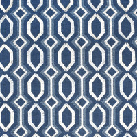 S2460 Denim Fabric