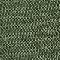 S2479 Grove Fabric