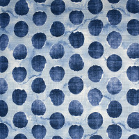 S2509 Denim Fabric