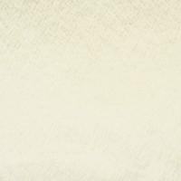 S2581 Cream Fabric