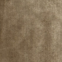 S2585 Shimmer Fabric