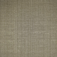 S2591 Truffle Fabric