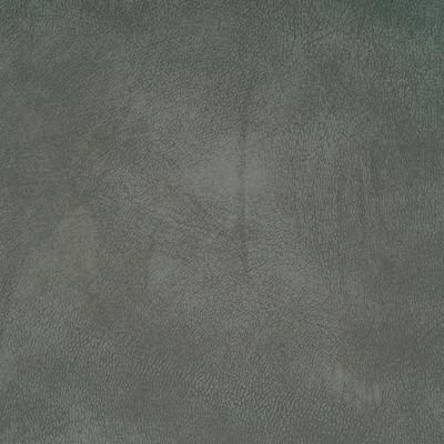 71946 Yorktown Ash Fabric