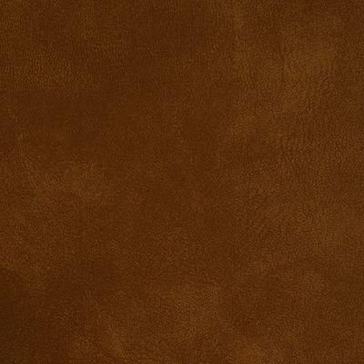 71958 Yorktown Beechnut Fabric