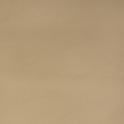 72356 Allante Lt Neutral Fabric