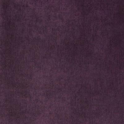 A2012 Purple Fabric