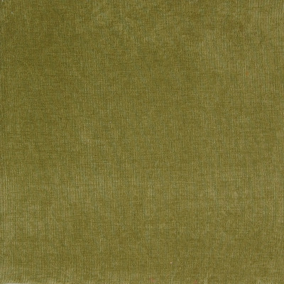A2017 Moss Fabric