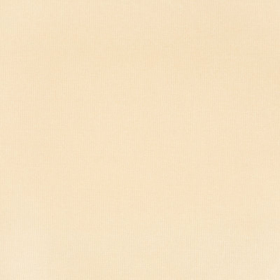 A2024 Marigold Fabric