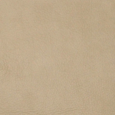 A2241 Canvas Fabric