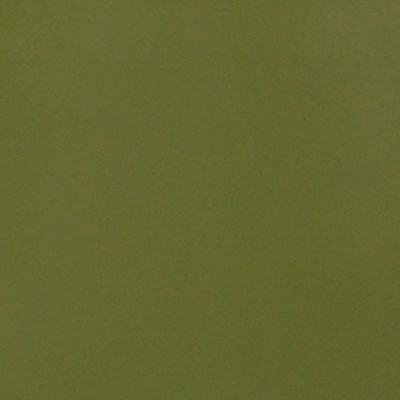 A4112 Pale Green Fabric